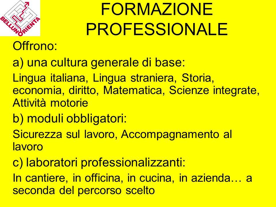 FORMAZIONE PROFESSIONALE Offrono: a) una cultura generale di base: Lingua italiana, Lingua straniera, Storia, economia, diritto, Matematica, Scienze i