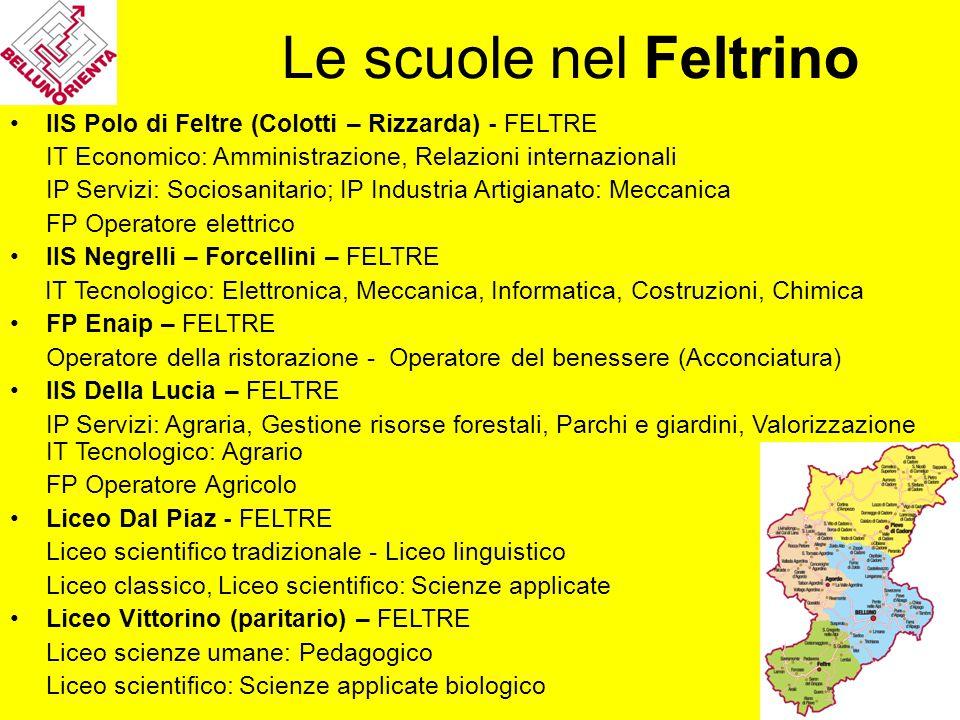 IIS Polo di Feltre (Colotti – Rizzarda) - FELTRE IT Economico: Amministrazione, Relazioni internazionali IP Servizi: Sociosanitario; IP Industria Arti