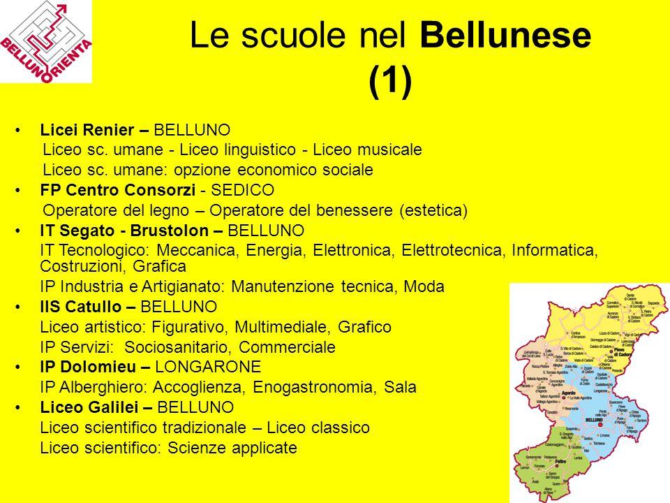 Le scuole nel Bellunese (1) Licei Renier – BELLUNO Liceo sc. umane - Liceo linguistico - Liceo musicale Liceo sc. umane: opzione economico sociale FP