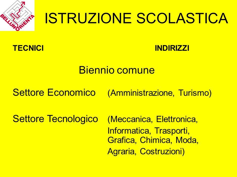 ISTRUZIONE SCOLASTICA TECNICIINDIRIZZI Biennio comune Settore Economico (Amministrazione, Turismo) Settore Tecnologico (Meccanica, Elettronica, Inform