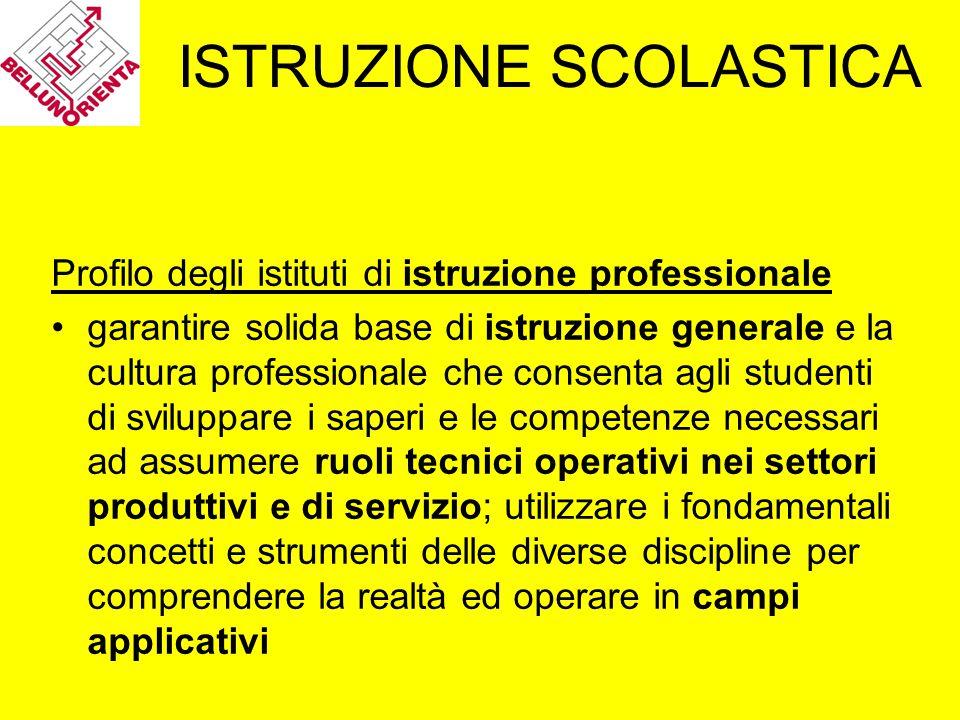 ISTRUZIONE SCOLASTICA Profilo degli istituti di istruzione professionale garantire solida base di istruzione generale e la cultura professionale che c
