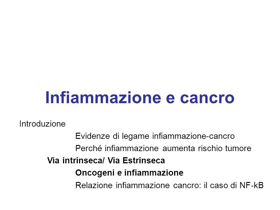 Infiammazione e cancro Introduzione Evidenze di legame infiammazione-cancro Perché infiammazione aumenta rischio tumore Via intrinseca/ Via Estrinseca