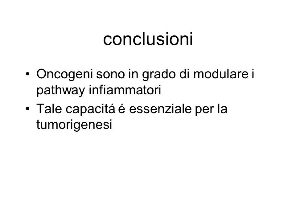 conclusioni Oncogeni sono in grado di modulare i pathway infiammatori Tale capacitá é essenziale per la tumorigenesi