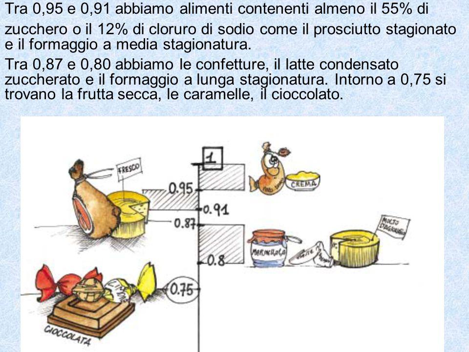 Tra 0,95 e 0,91 abbiamo alimenti contenenti almeno il 55% di zucchero o il 12% di cloruro di sodio come il prosciutto stagionato e il formaggio a media stagionatura.