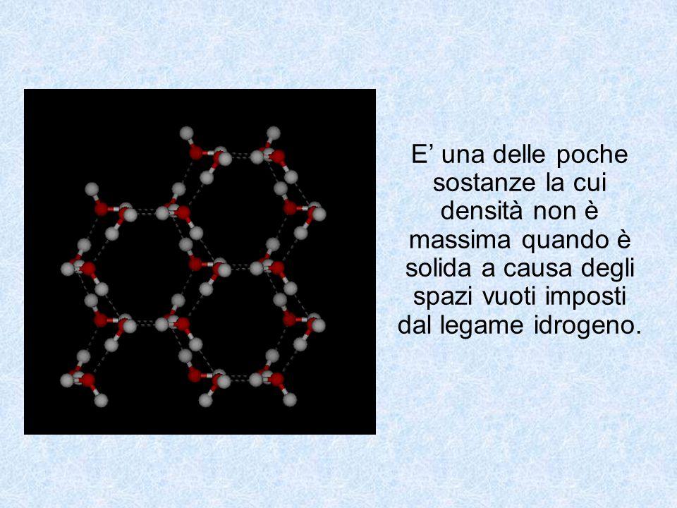 Ciascuno può aver osservato in prima persona gli effetti dell'osmosi.