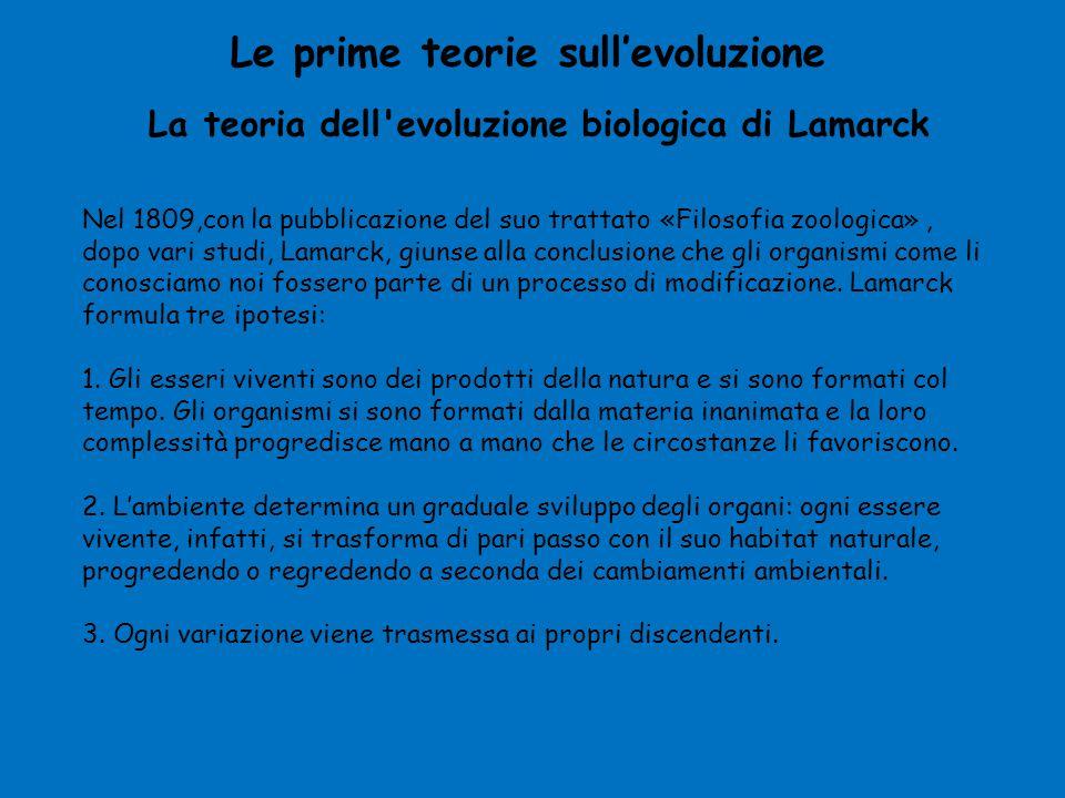 La teoria dell'evoluzione biologica di Lamarck Le prime teorie sull'evoluzione Nel 1809,con la pubblicazione del suo trattato «Filosofia zoologica», d