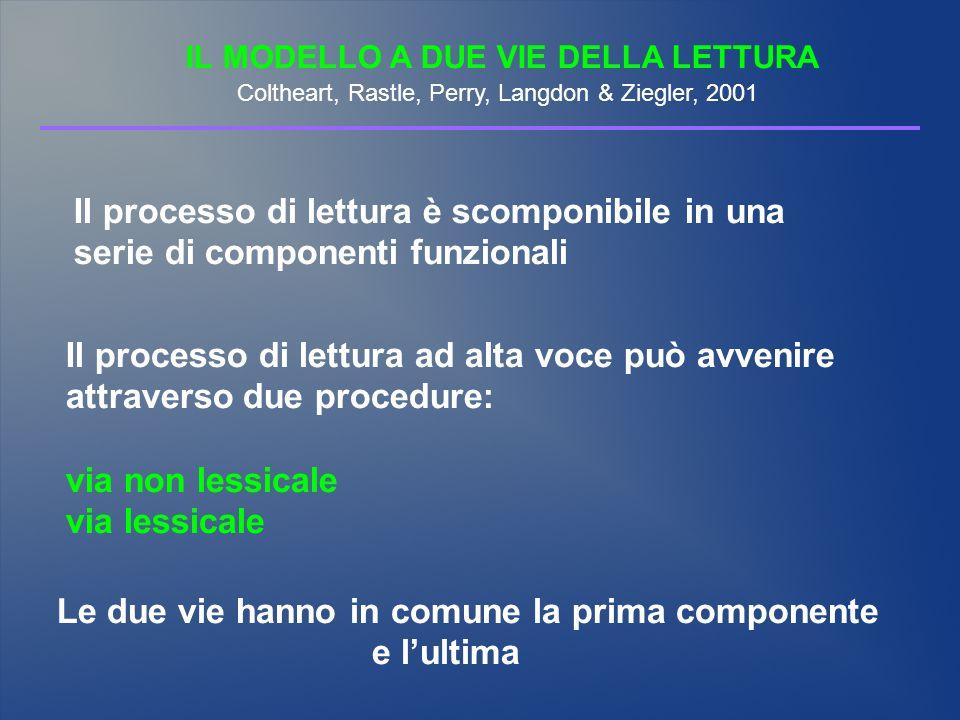 IL MODELLO A DUE VIE DELLA LETTURA Coltheart, Rastle, Perry, Langdon & Ziegler, 2001 Il processo di lettura è scomponibile in una serie di componenti