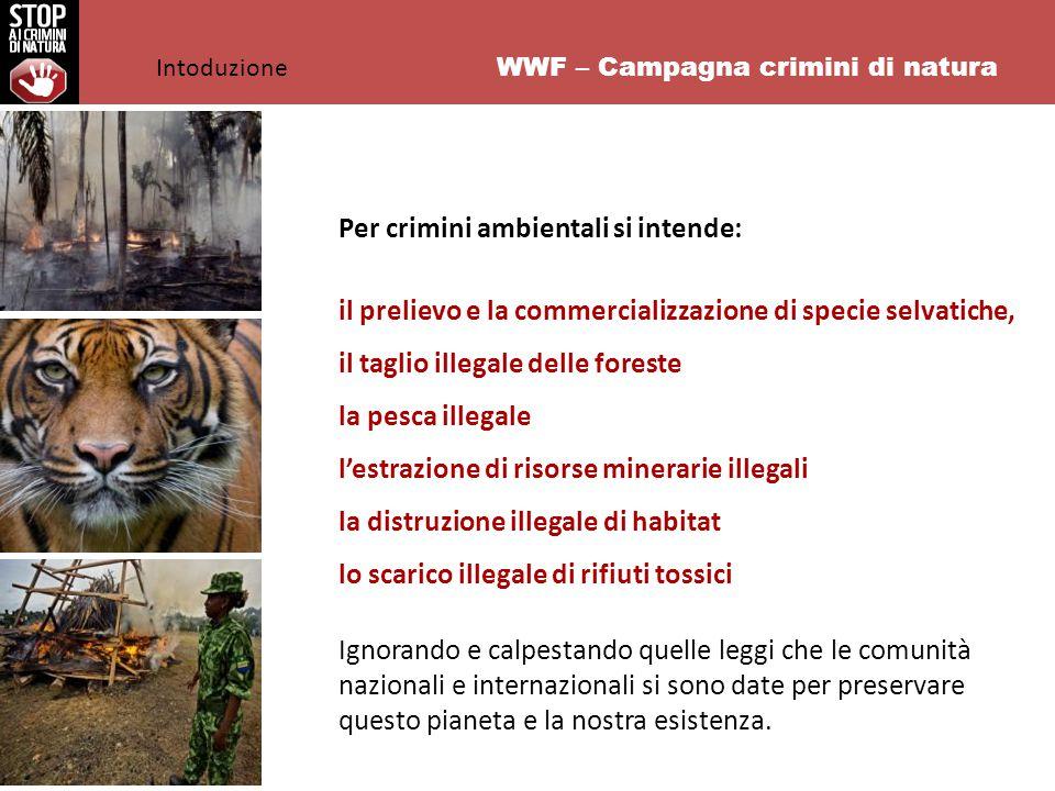 WWF – Campagna crimini di natura L'Italia è un paese ad altro tasso di illegalità e criminalità ambientale: una violazione ogni 43 minuti Il fatturato della criminalità ambientale si aggira intorno ai 15 miliardi di euro l'anno La dimensione italiana