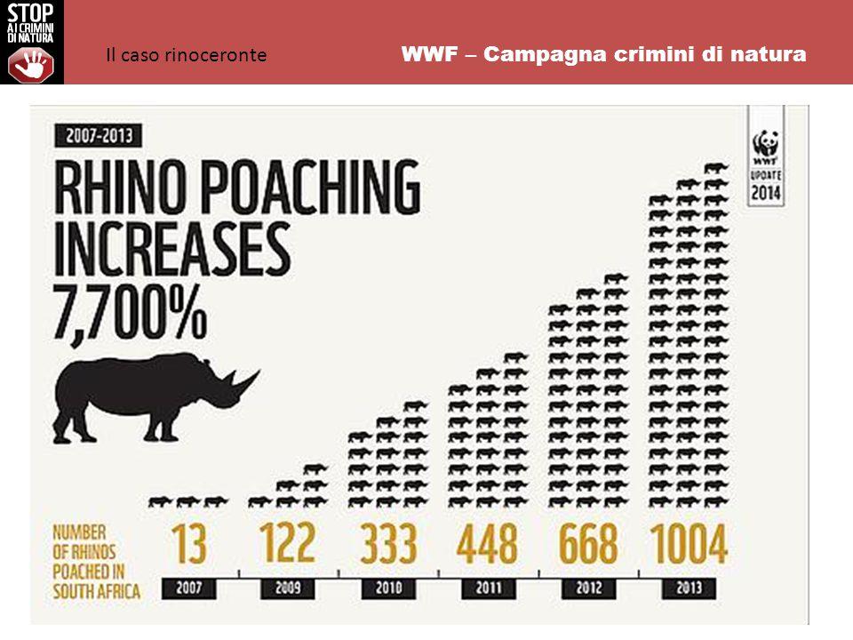 WWF – Campagna crimini di natura Il caso rinoceronte
