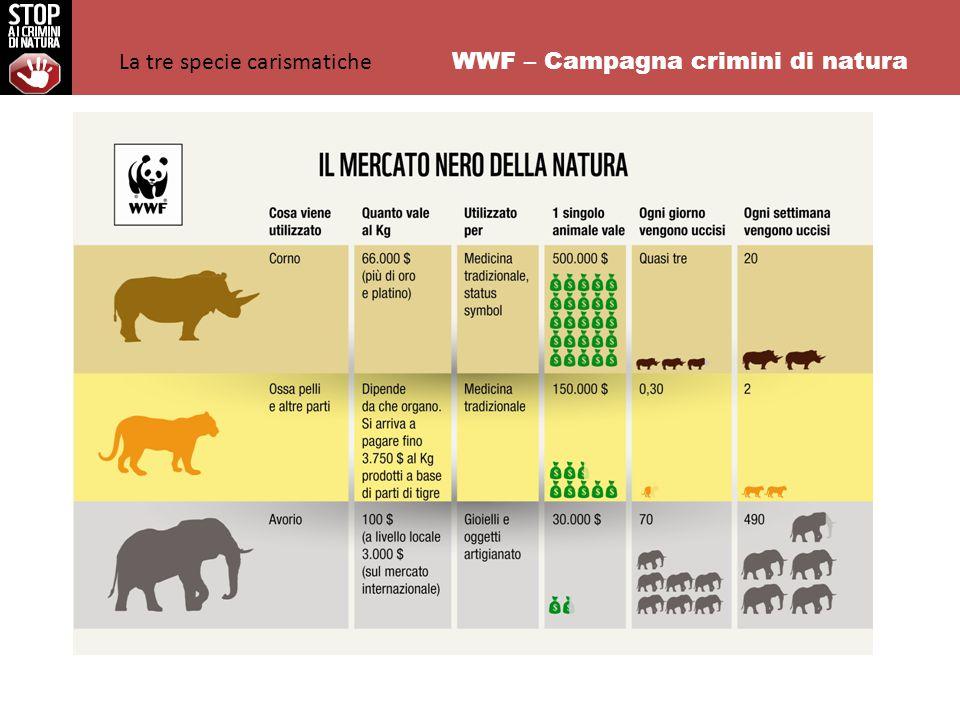 WWF – Campagna crimini di natura La tre specie carismatiche