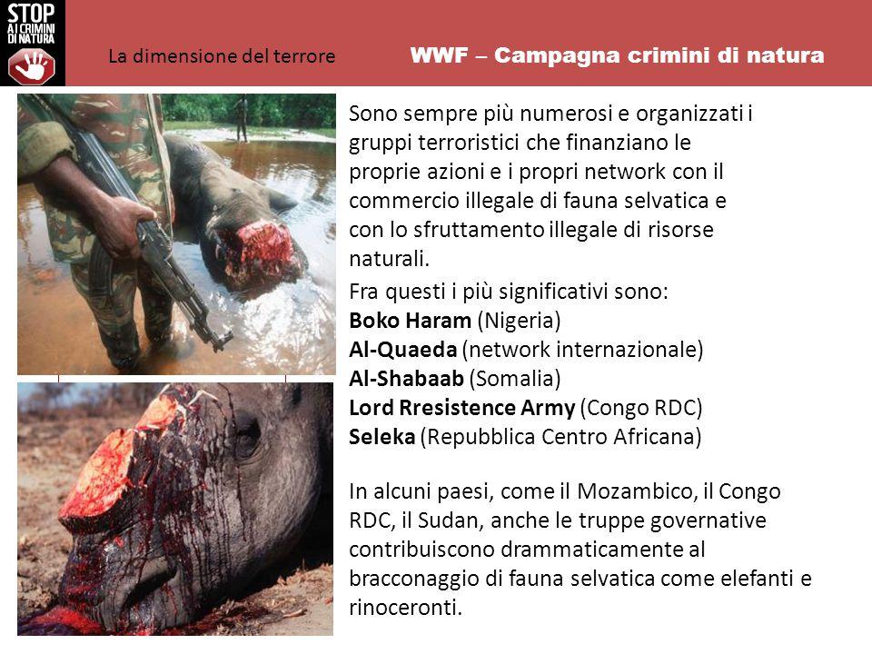 WWF – Campagna crimini di natura Sono sempre più numerosi e organizzati i gruppi terroristici che finanziano le proprie azioni e i propri network con il commercio illegale di fauna selvatica e con lo sfruttamento illegale di risorse naturali.