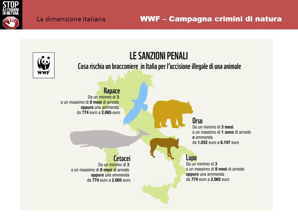 WWF – Campagna crimini di natura La dimensione italiana