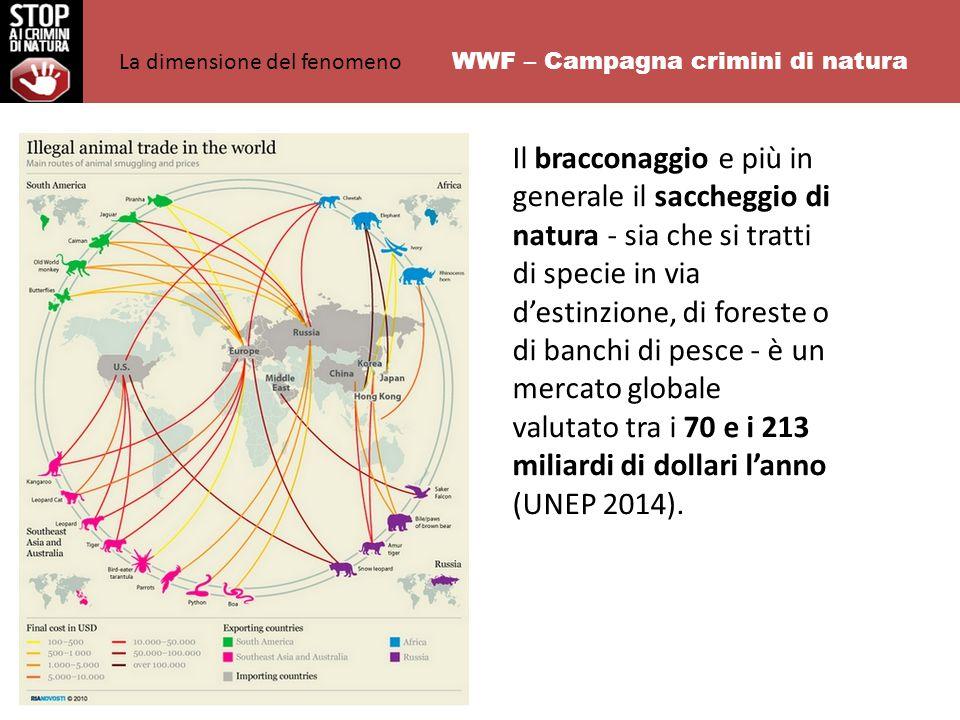 Il bracconaggio e più in generale il saccheggio di natura - sia che si tratti di specie in via d'estinzione, di foreste o di banchi di pesce - è un mercato globale valutato tra i 70 e i 213 miliardi di dollari l'anno (UNEP 2014).