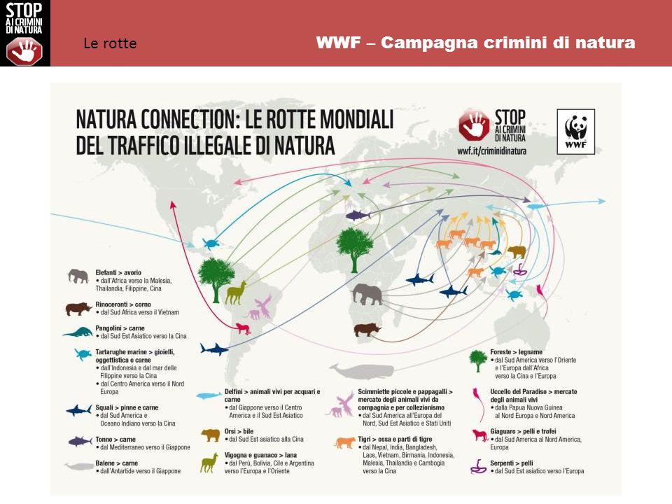 WWF – Campagna crimini di natura Le risorse naturali vengono vendute nei paesi consumatori a cifre da capogiro e i ricavati finanziano attività terroristiche e criminali.