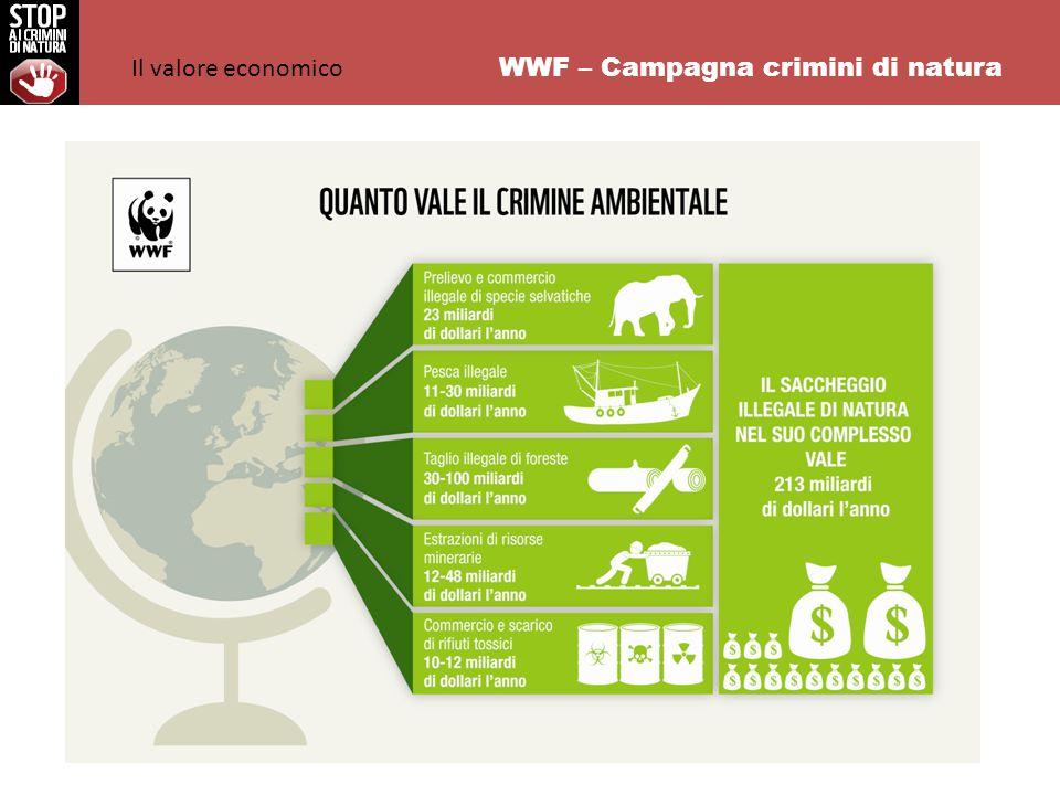 WWF – Campagna crimini di natura Per molti anni il bracconaggio e i crimini di natura sono stati considerati un problema che riguardava unicamente il mondo delle organizzazioni di conservazione.