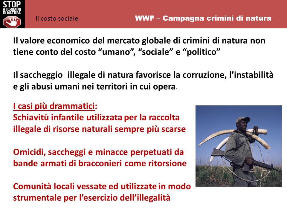 WWF – Campagna crimini di natura Il valore economico del mercato globale di crimini di natura non tiene conto del costo umano , sociale e politico Il saccheggio illegale di natura favorisce la corruzione, l'instabilità e gli abusi umani nei territori in cui opera.
