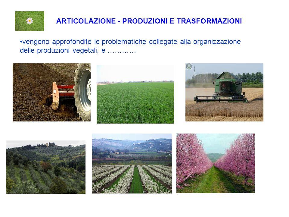 ARTICOLAZIONE - PRODUZIONI E TRASFORMAZIONI vengono approfondite le problematiche collegate alla organizzazione delle produzioni vegetali, e …………