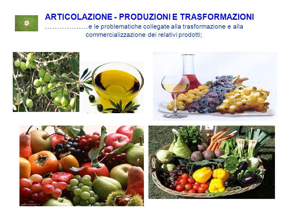 ARTICOLAZIONE - PRODUZIONI E TRASFORMAZIONI ……………… e le problematiche collegate alla trasformazione e alla commercializzazione dei relativi prodotti;