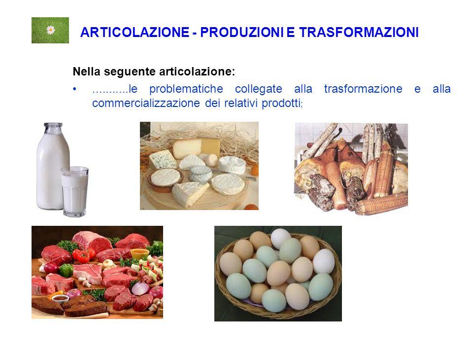 ARTICOLAZIONE - PRODUZIONI E TRASFORMAZIONI Nella seguente articolazione:...........le problematiche collegate alla trasformazione e alla commercializzazione dei relativi prodotti ;