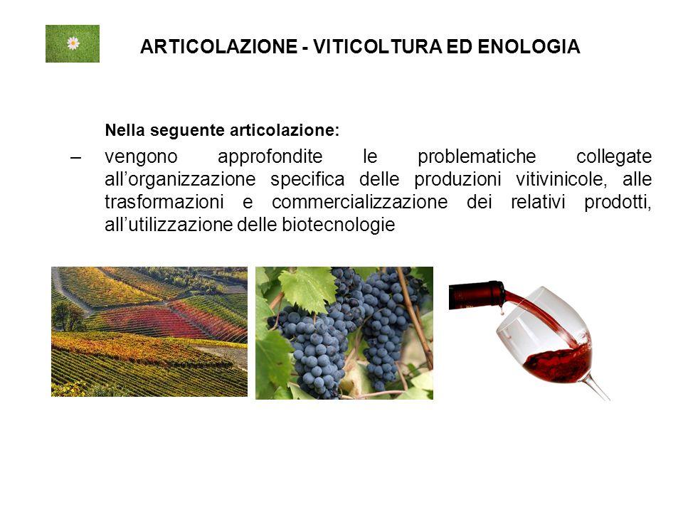 ARTICOLAZIONE - VITICOLTURA ED ENOLOGIA Nella seguente articolazione: –vengono approfondite le problematiche collegate all'organizzazione specifica delle produzioni vitivinicole, alle trasformazioni e commercializzazione dei relativi prodotti, all'utilizzazione delle biotecnologie