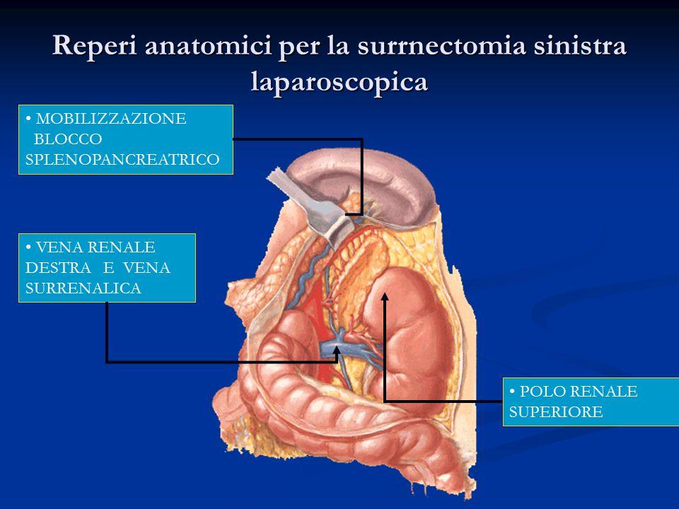 Reperi anatomici per la surrnectomia sinistra laparoscopica MOBILIZZAZIONE BLOCCO SPLENOPANCREATRICO VENA RENALE DESTRA E VENA SURRENALICA POLO RENALE SUPERIORE
