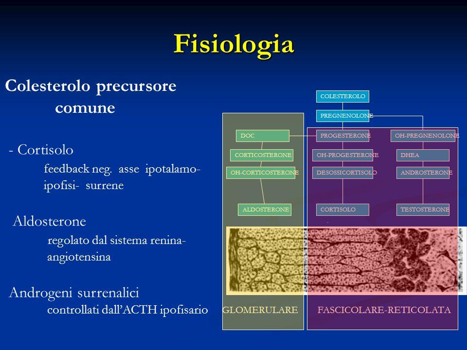 Fisiologia.