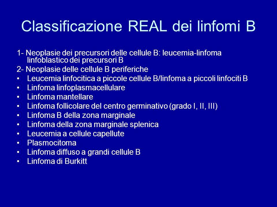 Classificazione REAL dei linfomi B 1- Neoplasie dei precursori delle cellule B: leucemia-linfoma linfoblastico dei precursori B 2- Neoplasie delle cel