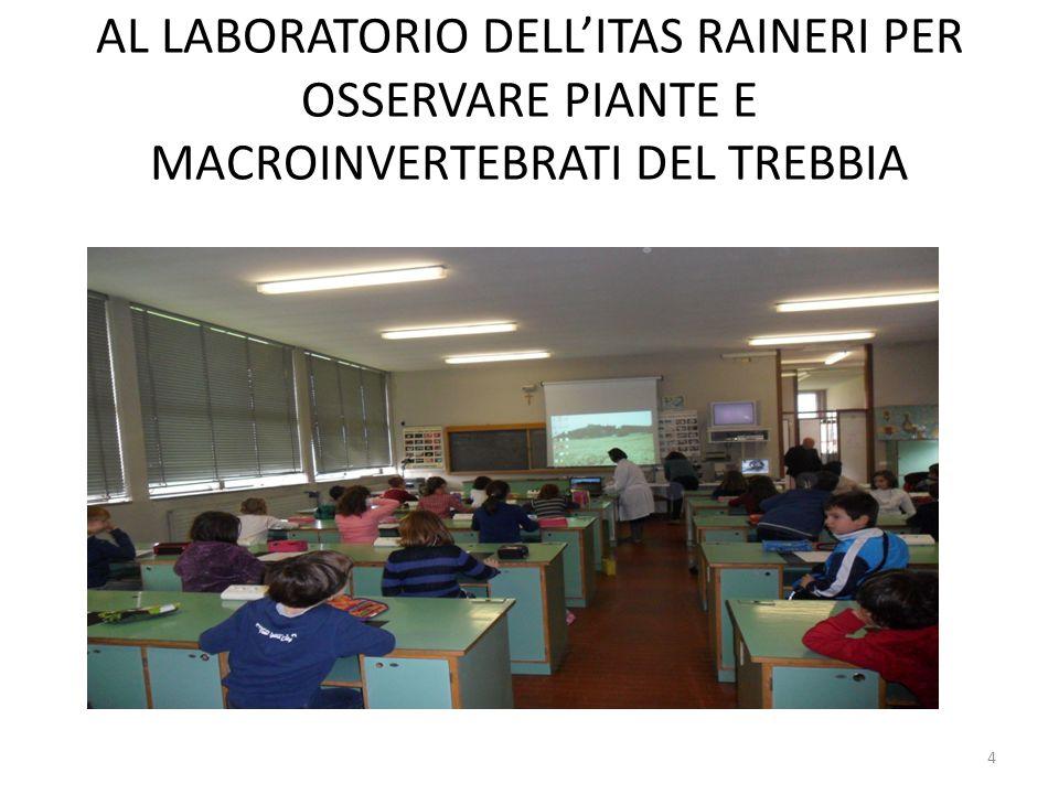 AL LABORATORIO DELL'ITAS RAINERI PER OSSERVARE PIANTE E MACROINVERTEBRATI DEL TREBBIA 4