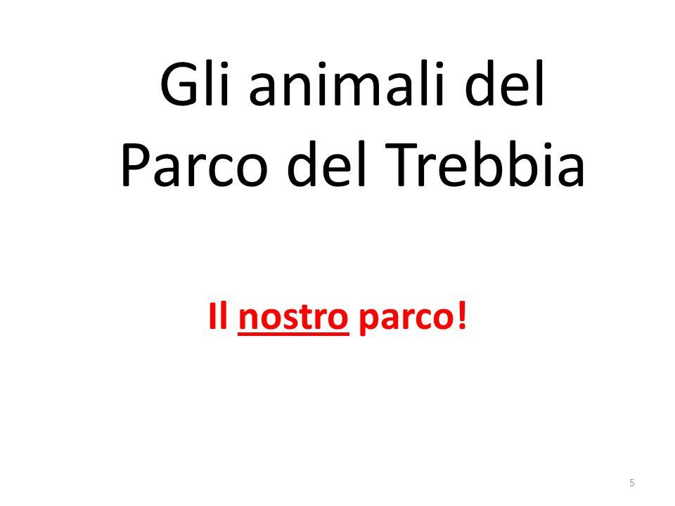 Gli animali del Parco del Trebbia Il nostro parco! 5
