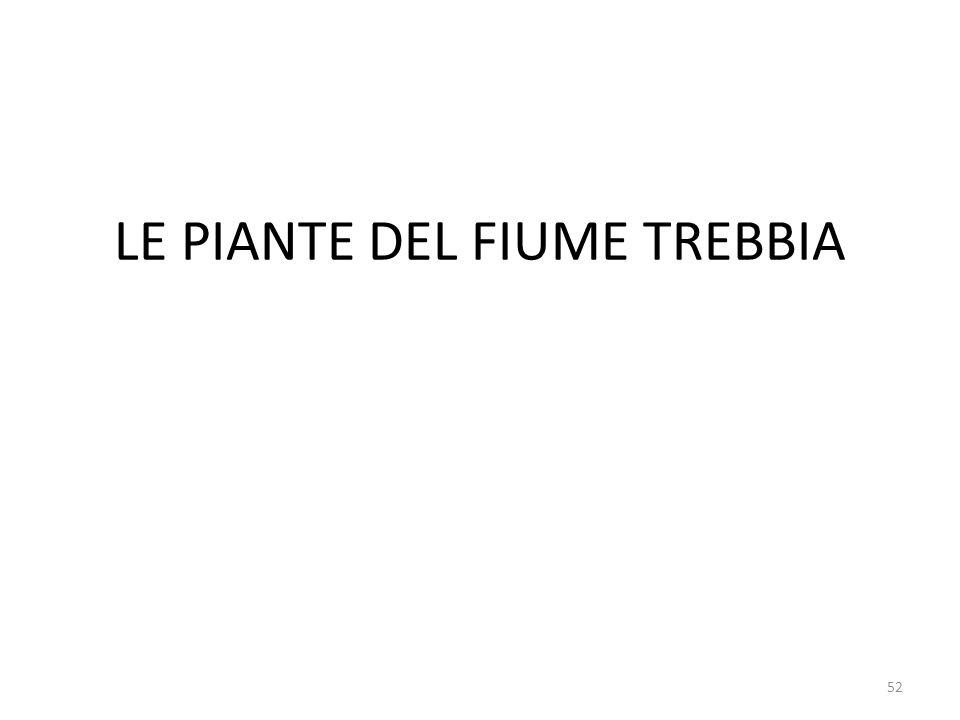 LE PIANTE DEL FIUME TREBBIA 52