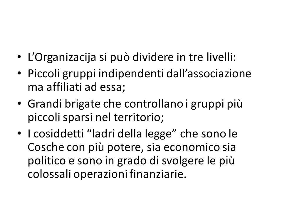 L'Organizacija si può dividere in tre livelli: Piccoli gruppi indipendenti dall'associazione ma affiliati ad essa; Grandi brigate che controllano i gr