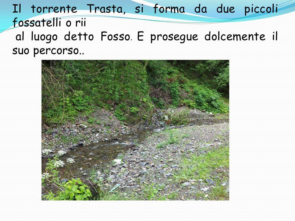 Il torrente Trasta, si forma da due piccoli fossatelli o rii al luogo detto Fosso.