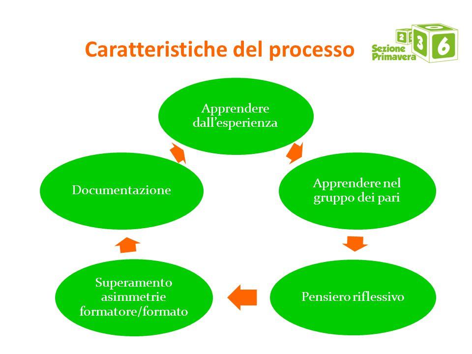 Caratteristiche del processo Apprendere dall'esperienza Apprendere nel gruppo dei pari Pensiero riflessivo Superamento asimmetrie formatore/formato Documentazione