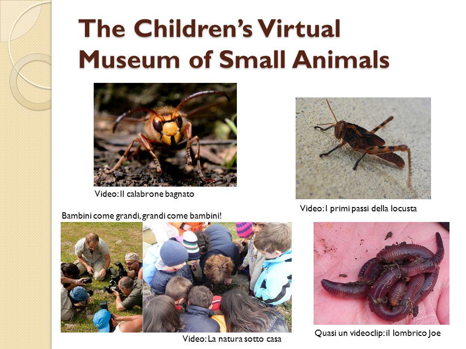 The Children's Virtual Museum of Small Animals Video: I primi passi della locusta Bambini come grandi, grandi come bambini! Video: La natura sotto cas