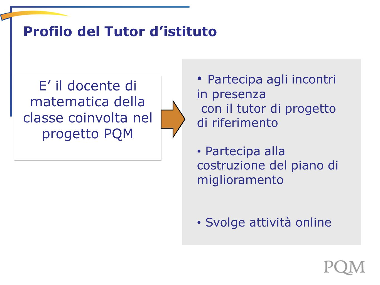 - Profilo del Tutor d'istituto E' il docente di matematica della classe coinvolta nel progetto PQM Partecipa agli incontri in presenza con il tutor di
