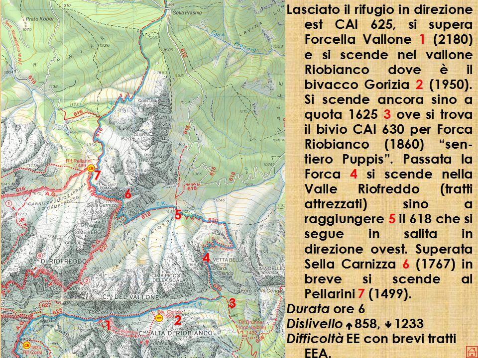 1 2 3 4 5 6 7 Lasciato il rifugio in direzione est CAI 625, si supera Forcella Vallone 1 (2180) e si scende nel vallone Riobianco dove è il bivacco Gorizia 2 (1950).