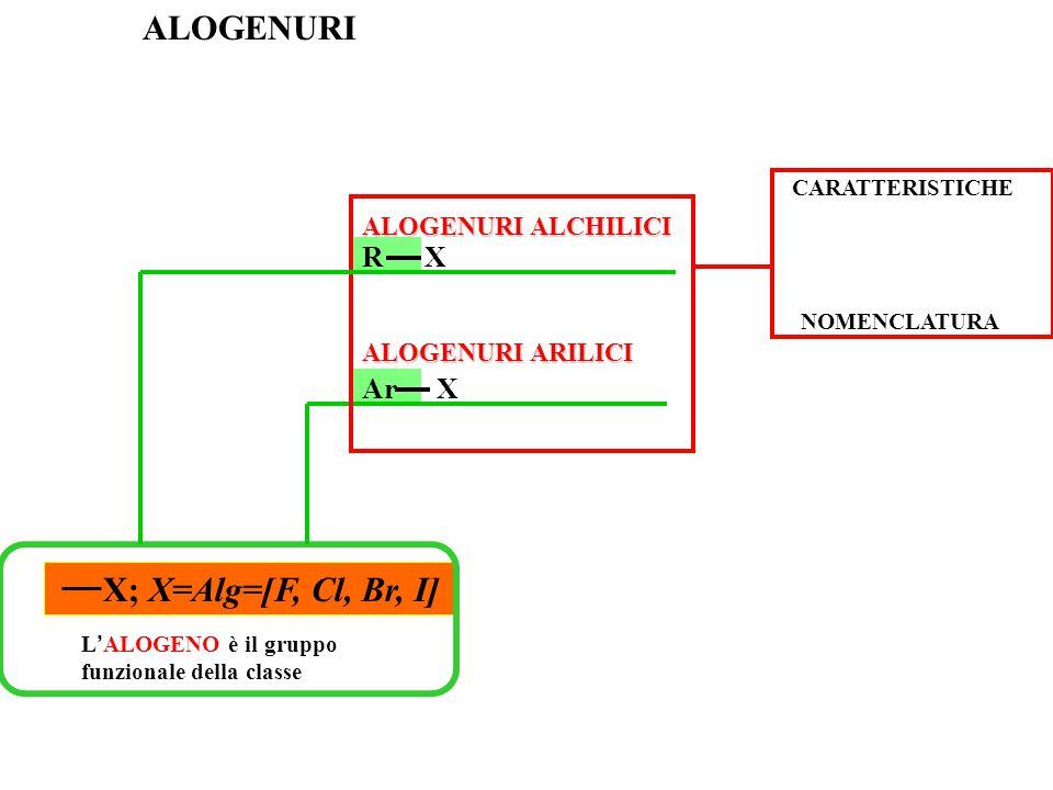 L ' ALOGENO è il gruppo funzionale della classe X; X=Alg=[F, Cl, Br, I] ALOGENURI ALOGENURI ALCHILICI ALOGENURI ARILICI NOMENCLATURA CARATTERISTICHE R X Ar X
