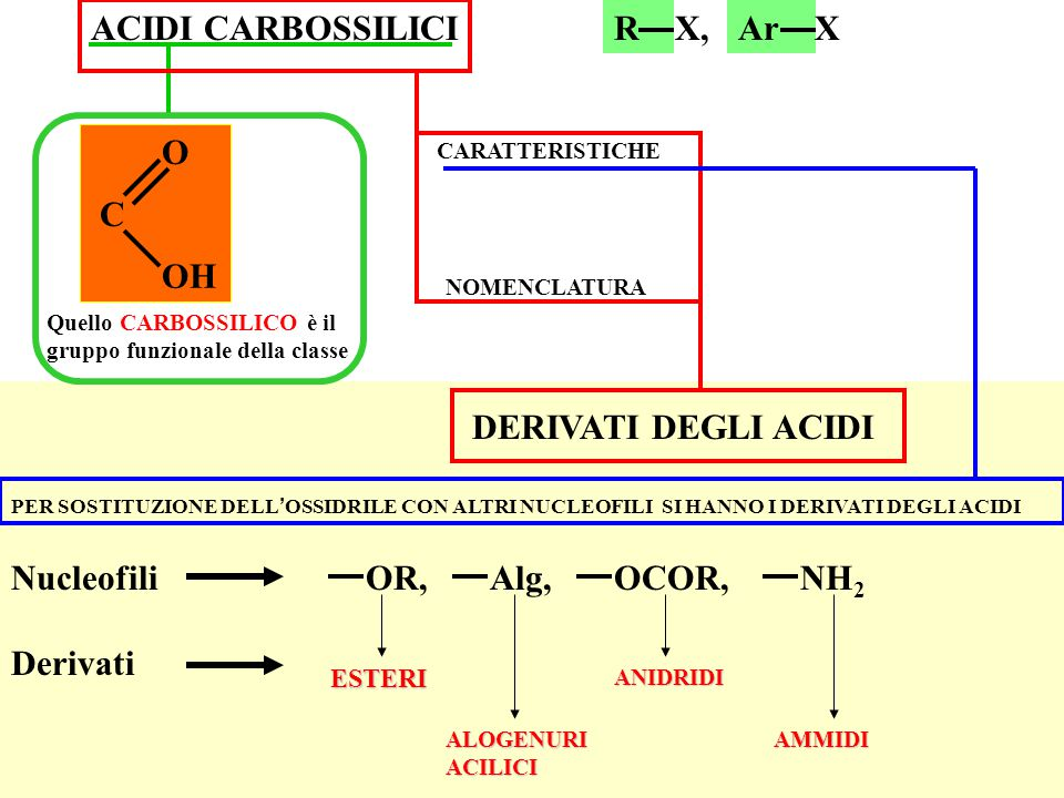 ACIDI CARBOSSILICI NOMENCLATURA CARATTERISTICHE R X,Ar X Quello CARBOSSILICO è il gruppo funzionale della classe DERIVATI DEGLI ACIDI PER SOSTITUZIONE DELL ' OSSIDRILE CON ALTRI NUCLEOFILI SI HANNO I DERIVATI DEGLI ACIDI OR,Alg,OCOR,NH 2 Nucleofili Derivati ALOGENURI ACILICI ANIDRIDI AMMIDI ESTERI C O OH