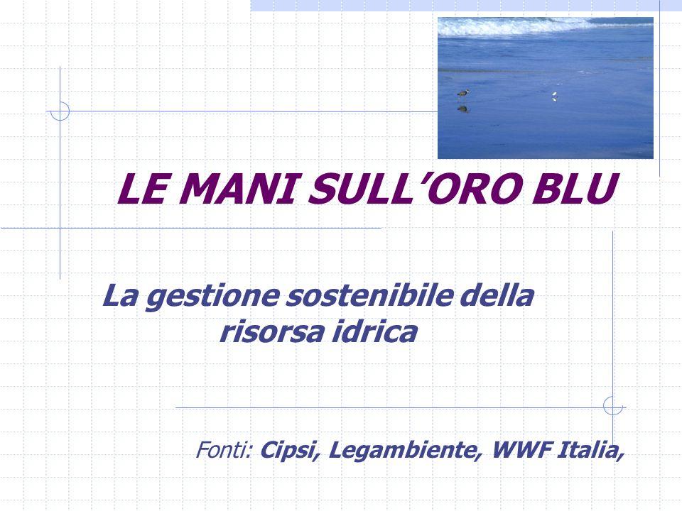 LE MANI SULL'ORO BLU La gestione sostenibile della risorsa idrica Fonti: Cipsi, Legambiente, WWF Italia,