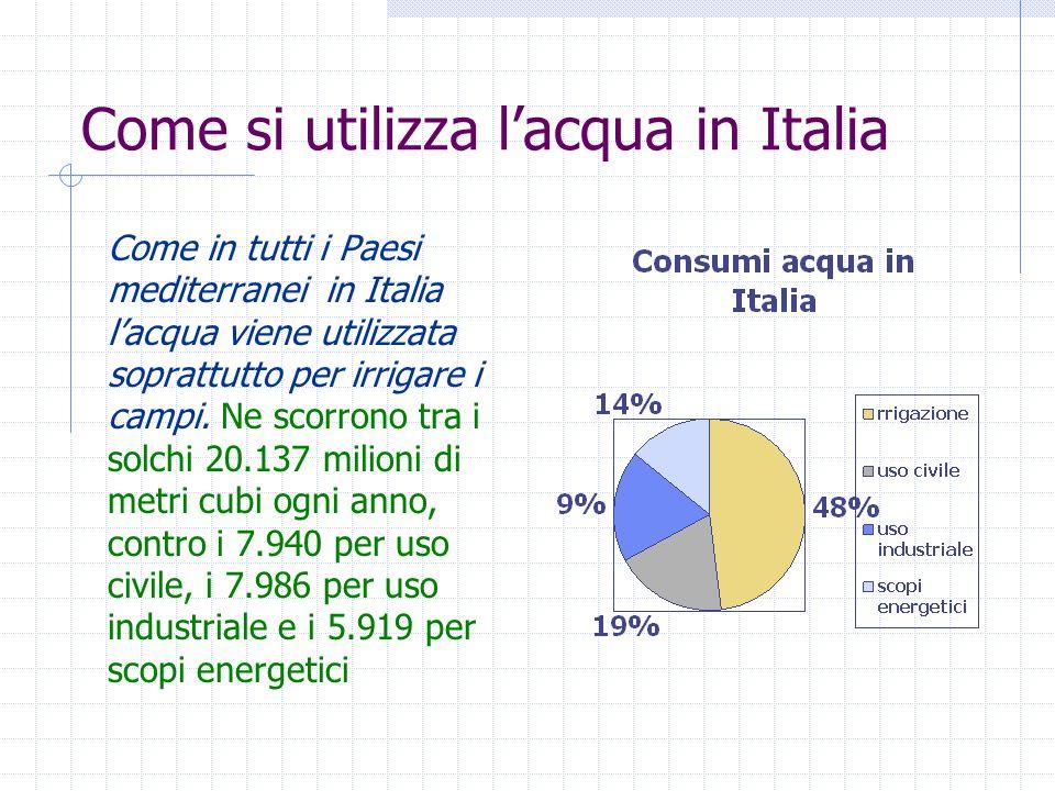 Come si utilizza l'acqua in Italia Come in tutti i Paesi mediterranei in Italia l'acqua viene utilizzata soprattutto per irrigare i campi. Ne scorrono