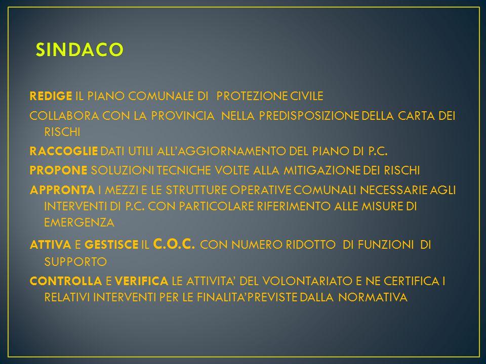 Perviene agli obiettivi della Regione Calabria, in materia di protezione civile, secondo l'indirizzo della normativa vigente, e comunque in supporto alle istituzioni e non in sostituzione Volontariato
