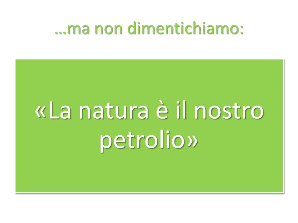 …ma non dimentichiamo: «La natura è il nostro petrolio»