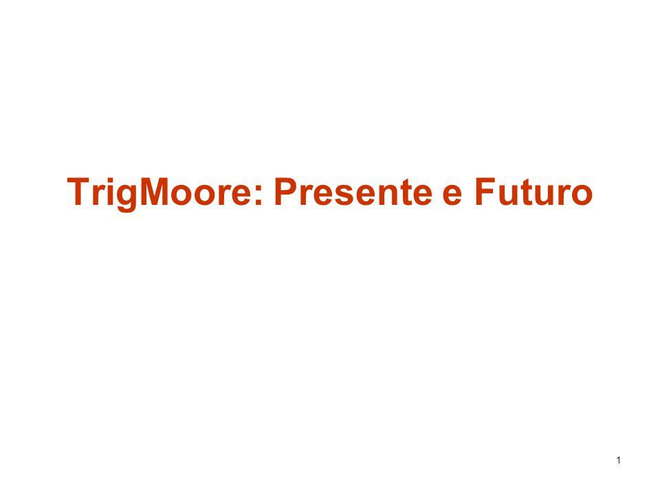 1 TrigMoore: Presente e Futuro