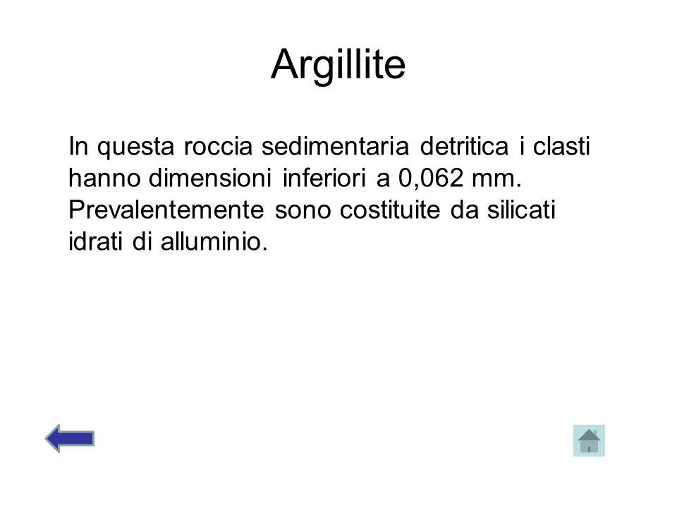 Argillite In questa roccia sedimentaria detritica i clasti hanno dimensioni inferiori a 0,062 mm.