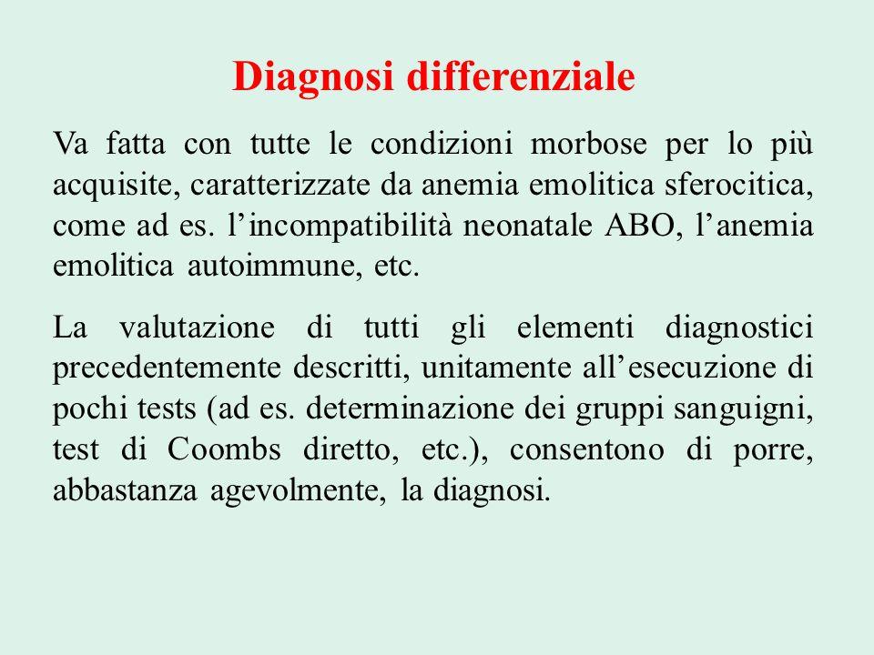Diagnosi differenziale Va fatta con tutte le condizioni morbose per lo più acquisite, caratterizzate da anemia emolitica sferocitica, come ad es. l'in