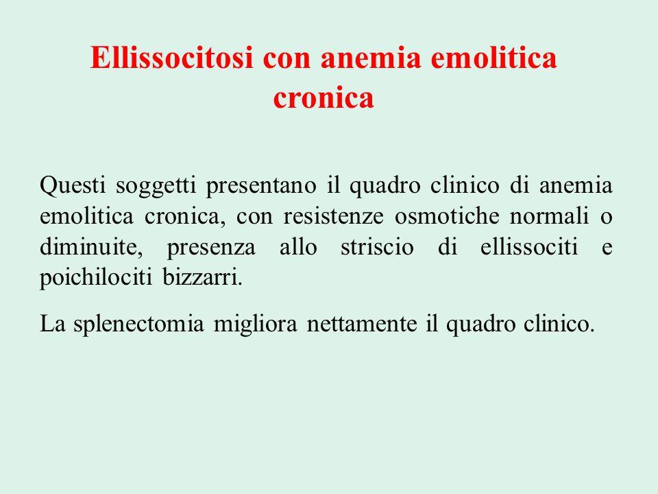 Ellissocitosi con anemia emolitica cronica Questi soggetti presentano il quadro clinico di anemia emolitica cronica, con resistenze osmotiche normali