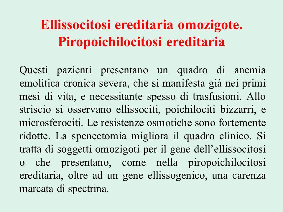 Ellissocitosi ereditaria omozigote. Piropoichilocitosi ereditaria Questi pazienti presentano un quadro di anemia emolitica cronica severa, che si mani