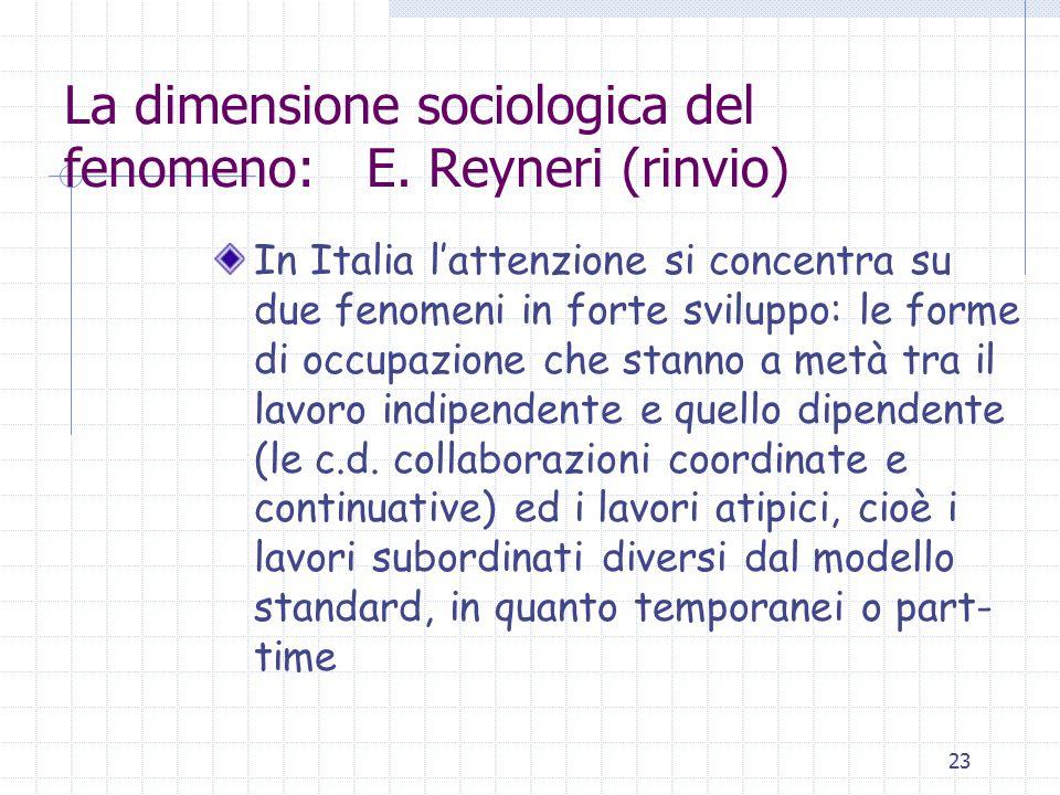 23 La dimensione sociologica del fenomeno: E. Reyneri (rinvio) In Italia l'attenzione si concentra su due fenomeni in forte sviluppo: le forme di occu
