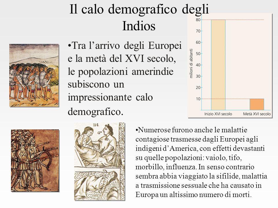 Il calo demografico degli Indios Tra l'arrivo degli Europei e la metà del XVI secolo, le popolazioni amerindie subiscono un impressionante calo demografico.