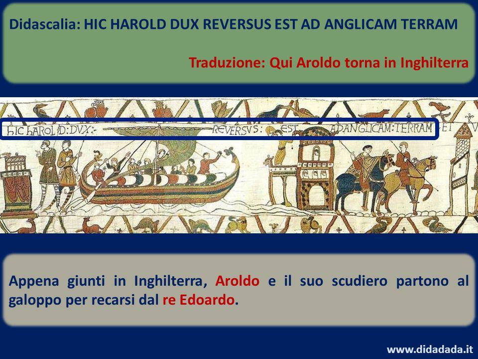 Appena giunti in Inghilterra, Aroldo e il suo scudiero partono al galoppo per recarsi dal re Edoardo. Didascalia: HIC HAROLD DUX REVERSUS EST AD ANGLI